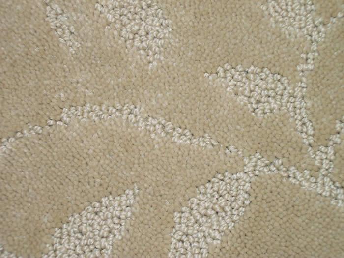 Sculptured Carpet For Strongsville Brunswick Elyria Medina